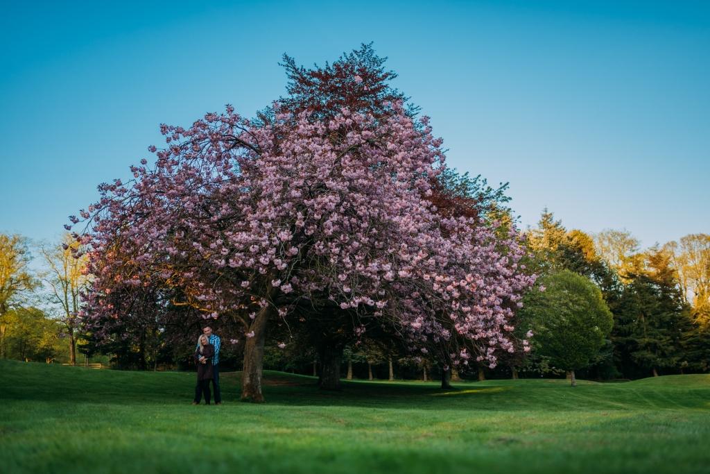 camperdown park pre wedding (22 of 75)